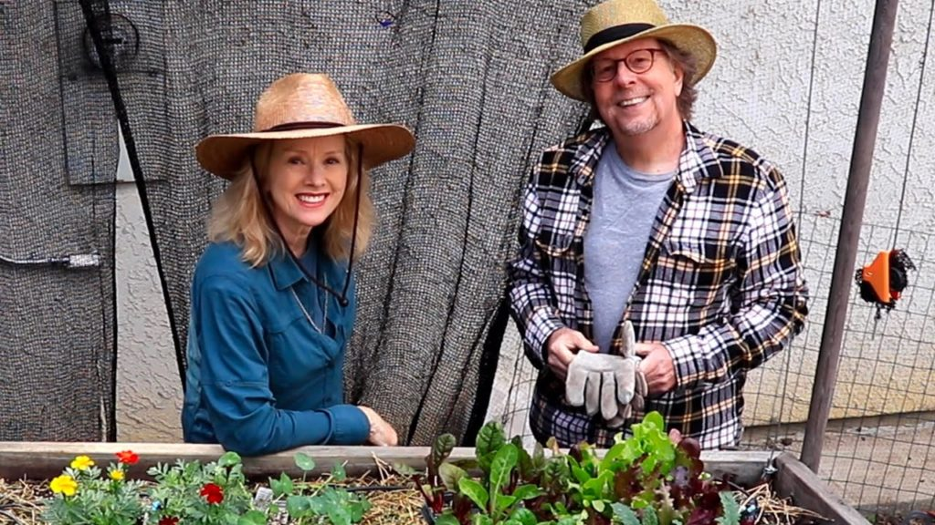 FIVE TIPS for creating a HILLSIDE GARDEN, plus planting RAISED BEDS! Part 3!