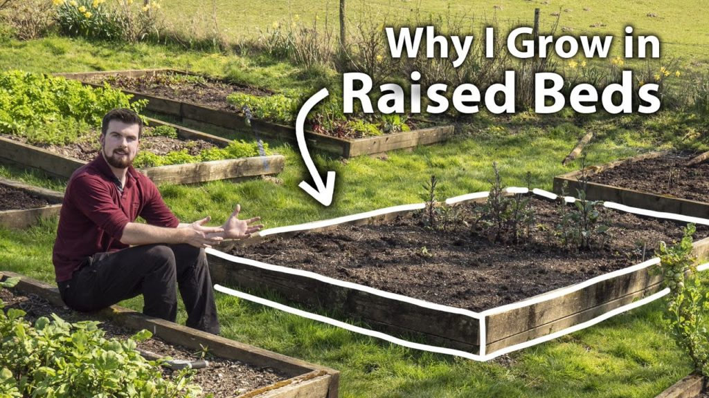 The Benefits of Growing Food in Raised Beds