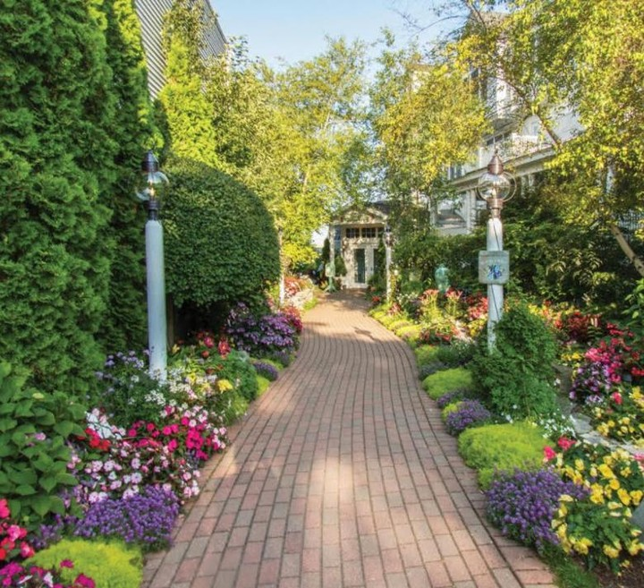 Follow the garden path... . Begonias, hydrangeas, and lemon grass - oh my! From ...
