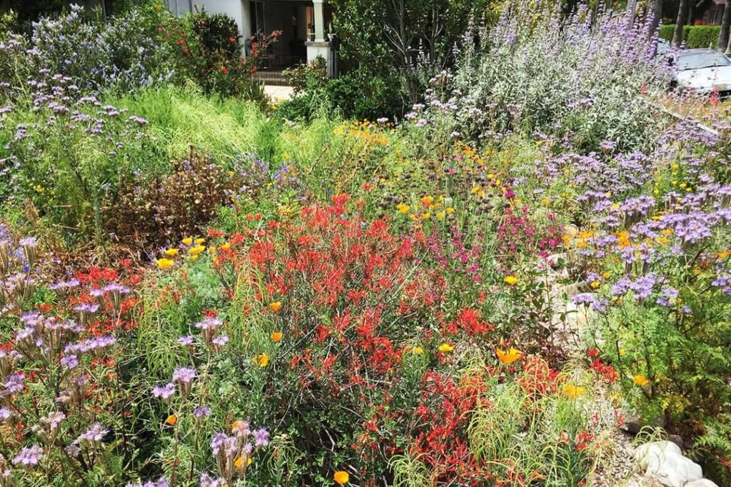 Go on a free online garden tour this weekend with @theodorepayne as they showcas...