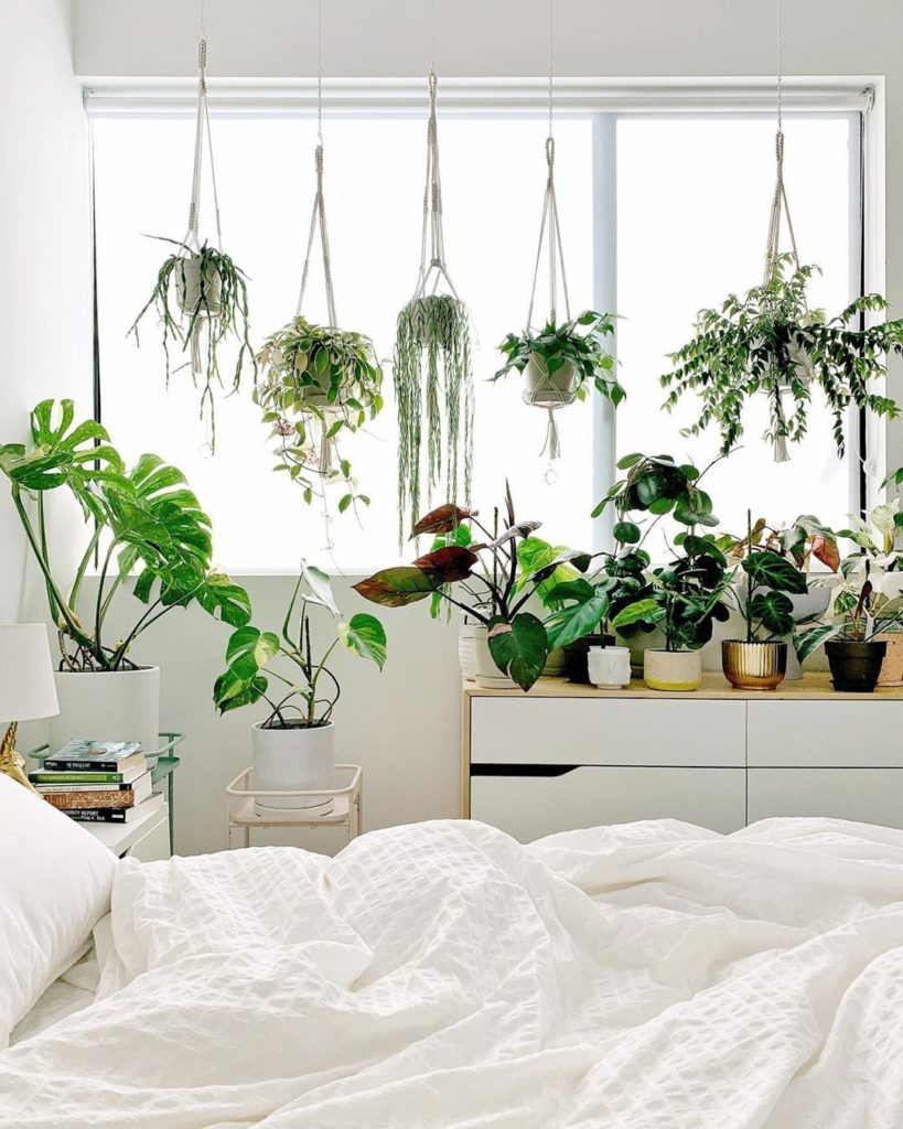 Can't get enough of a good hanging plant situation. Have you started on any plan...