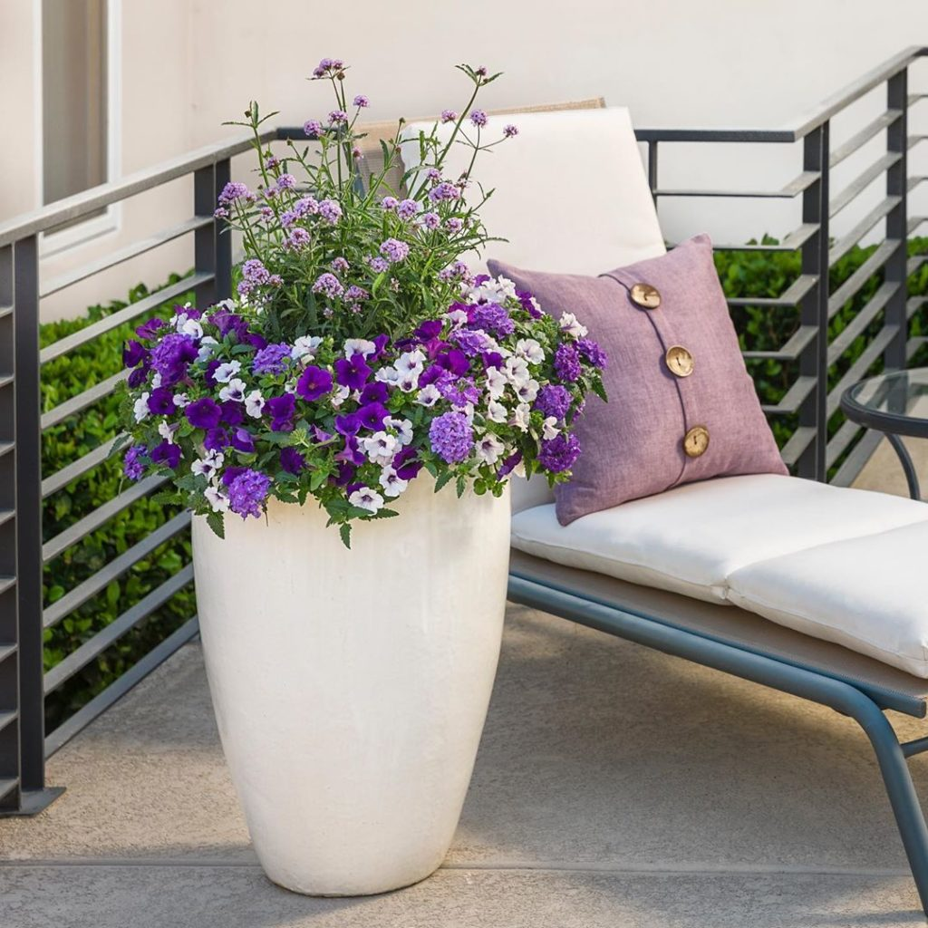 Have a lilac festival in your own garden! . This combo of purple is just stunnin...