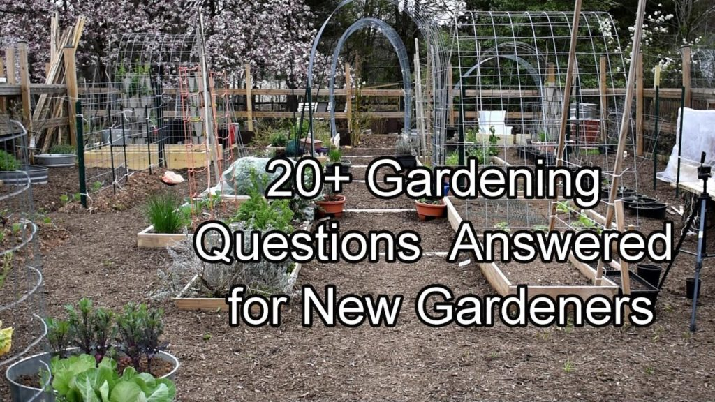 20+ Frequently Ask Garden Questions Answered for New Gardeners: Questions listed in the Description!