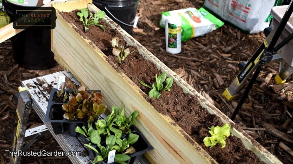 Complete Flower Box & Container Gardening E-1: Making a $6 Flower Box, Soil Mix, Lettuces, Radishes