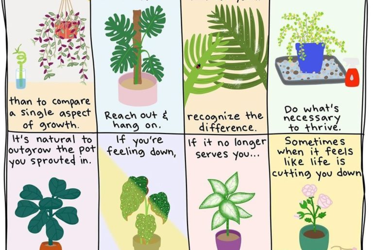 We've learned a thing or two from our plants. It turns out they can help us grow...