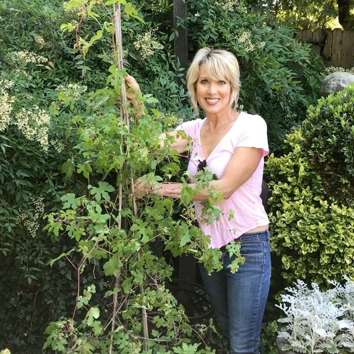 Great gardening tip from @potagerblog: When you need to stake a plant, put in th...